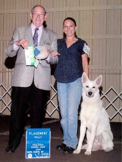 Keeper wins 3rd place at an AKC Rally trial in the Novice Class