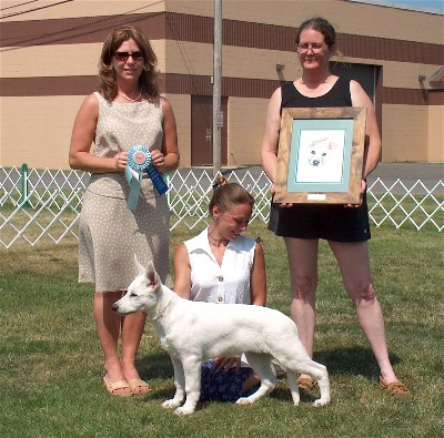 Keeper's first conformation show-- Best Puppy in Show at our UWSC nationals!